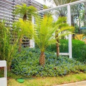 Empresa de plantas ornamentais