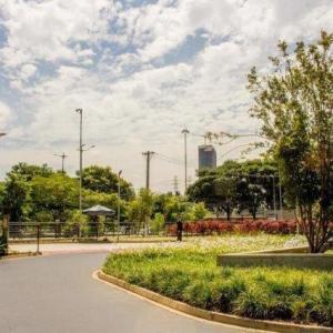 Reforma de jardins